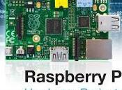 Raspberry Hardware Projects