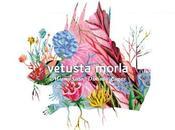 Vetusta Morla regresa tema digo