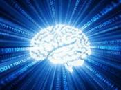 Conectan cerebro humano internet tiempo real
