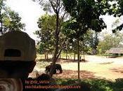 Safari Parque Nacional Walawe