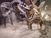 Alosaurio (Miguel Civeira)