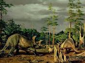 Llámame... Triceratops