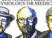 Nobel 2017 premia descubridores mecanismo regulador ritmo circadiano
