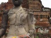 Mahathat, Ayutthaya, cabeza Buda entre árboles