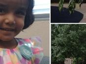 Desaparecida Texas niña padre dejó callejón tomarse leche
