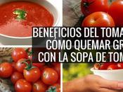 Beneficios tomate cómo quemar grasa sopa