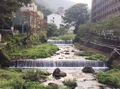 semana Hakone (箱根)