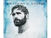 silencio bajo agua Brittainy Cherry