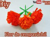 Diy. Flor Cempasuchil. Muertos