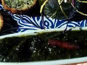 Mermelada espinacas tropezones ......gran descubrimiento