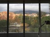 Cómo cortinas favorecen rendimiento laboral?