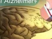 Infecciones fúngicas fallecidos Alzheimer