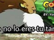 Imagenes frases graciosas dragon ball super memes