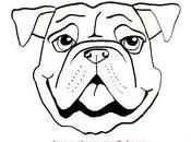 Faciles dibujos tiernos caritas perros para dibujar