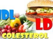 Lista alimentos recomendados para reducir colesterol