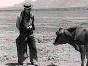 Cine Literatura: Buster Keaton letras