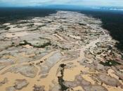 Ecocidio Arco Minero Orinoco grande Panamá