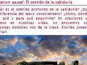 'Palatium aquae': sentido sabiduría. Artículo completo Joaquín Weil yogaenred.com,