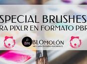 Especial Brushes Para Pixlr Formato