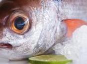 Pescados temporada, mejor opción comer sano Navidad