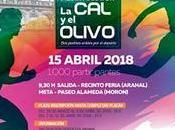 XXXV media maraton olivo 2018
