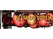 Blog Trip Festa Botelo 2018