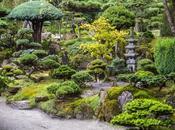 Tipos Jardines Orientales