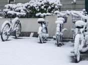 nevada cada Tokyo