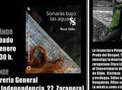 """Sonarás bajo aguas"" Zaragoza"