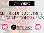 Paletas Colores Variedad Color