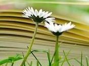 mejores libros crecimiento personal espiritual debes leer antes morir selección realizada desde corazón
