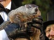 ¡feliz marmota! mejor dicho candelera