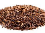 Rooibos: remineralizante, calmante antioxidante