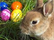 2674.- comemos conejo Pascua