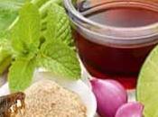 Remedios caseros para pulgas casa