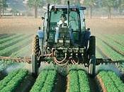 Pesticidas Comerciales Seguros Como Parecen