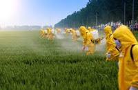 Trastornos Desarrollo Cerebral Vinculados Toxinas Ambientales