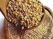 Beneficios semillas lino nuestra salud