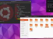 puedes probar nuevo tema íconos ventanas Ubuntu 18.04