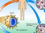 Progresos terapia génica
