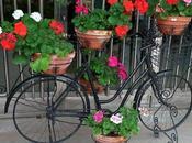 DECO: Bicicletas