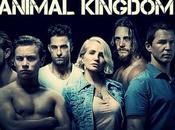 {Serie} Animal Kingdom (2016-2017)