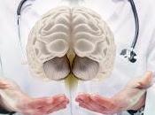sujetos varones alto pueden tener mayor riesgo disminuciones futuras cognición otras funciones cerebrales
