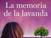memoria lavanda