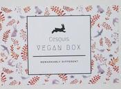 Cesqui´s Vegan Boxes Yoganímate