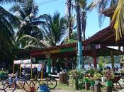 Conozca paraíso caribeño Costa Rica Puerto Viejo Manzanillo