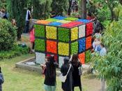 """propuesta """"Rubik Flor"""" Temps Flors 2018"""
