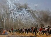 Palestina, causa perdida