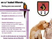 jornada educación adopción Illescas. Junio.
