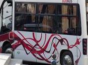 líneas microbuses